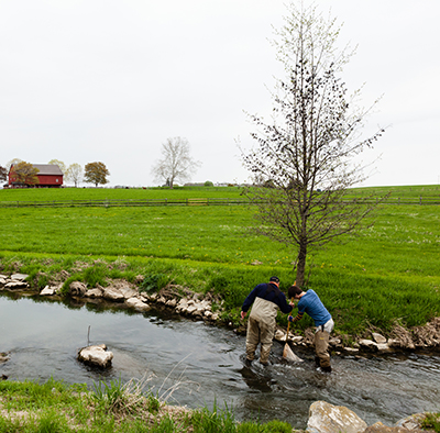 Monitoring a stream in Lancaster County