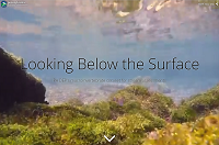 Looking Below the Surface Application thumbnail