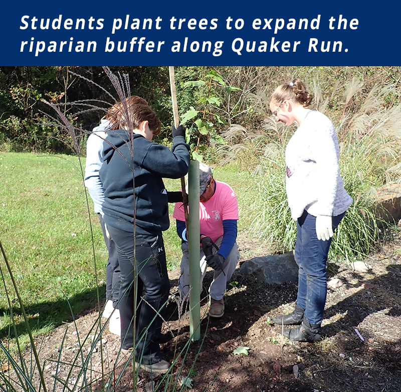 Students plant trees to expand a riparian buffer