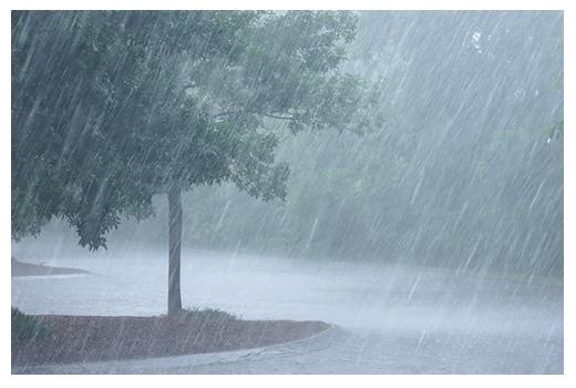 Storm Emergencies